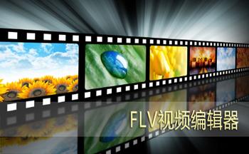 FLV视频编辑器