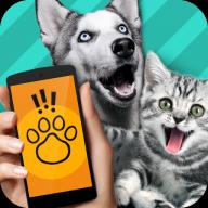 能和狗交流的U乐娱乐平台1.1 安卓最新版