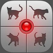 抖音猫语翻译软件1.1.0 安卓最新版