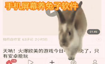 手�C屏幕�B兔子�件