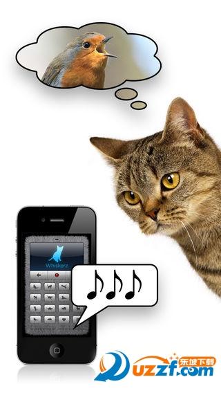 猫咪语言翻译器截图