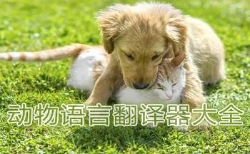�游镎Z言翻�g器app