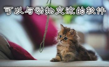 可以与动物交流的软件中文版_可以和动物交流的神器