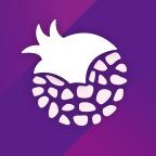 紫石榴应用商店客户端1.5.1 安卓版