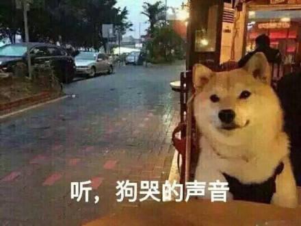 2017情人节微信gif动态表情大全