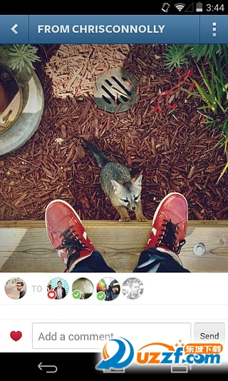 Instagram安卓版截图