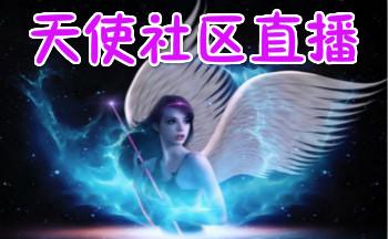 天使社区直播