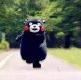 熊本熊女神和女汉子区别表情包大全