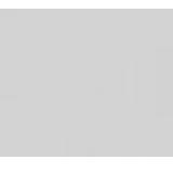 香菇QQ空间主页赞1.0官方版