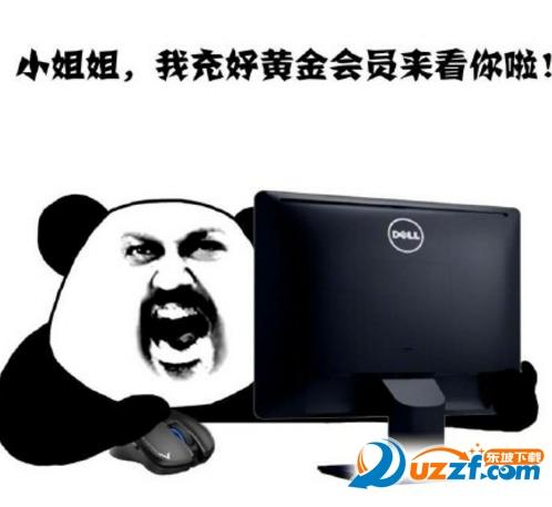 熊猫眼熬夜追剧表情包 熬夜追剧表情包无水印版-东坡