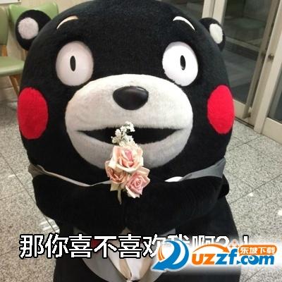 熊本熊你喜不喜欢我表情包超全打包版图片