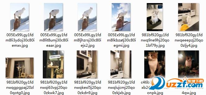 朕要好好看看我的江山表情图片截图0