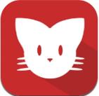 猫咪app官方版1.0.3 最新版
