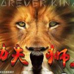 功夫狮王免费版4.0安卓最新版