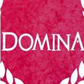 Domina中文版免安装硬盘版