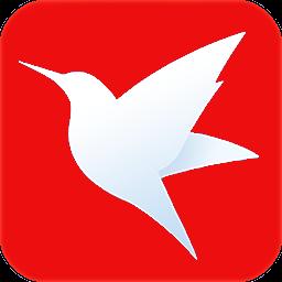 火鸟磁力云视频播放器电脑版1.1 破解版