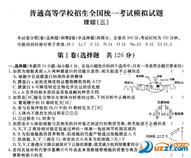 {2017衡水金卷衡水调研卷理综}.