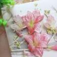 2018三八妇女节手工贺卡图片大全最新版【附制作图解】