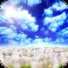 蓝天白云视频动态壁纸素材手机版1.2.8 安卓版