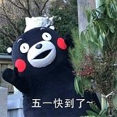 熊本熊五一劳动节表情包超清无水印版