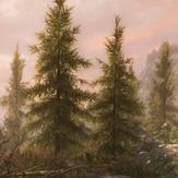 上古卷轴5天际重制版森林mod