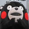 熊本熊减肥表情包高清无水印版