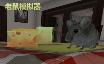 Rat Simulator修改器