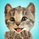 little kitten安卓版0.0.1 内购破解版