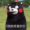 520熊本熊表白表情包