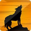夜狼映拍苹果版1.0官方版