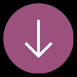 百度网盘下载器正式版dpdownload1.11最新稳定防和谐版