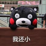 熊本熊六一儿童节表情包