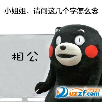 熊本熊这个字怎么念表情包超高清无水印免费版