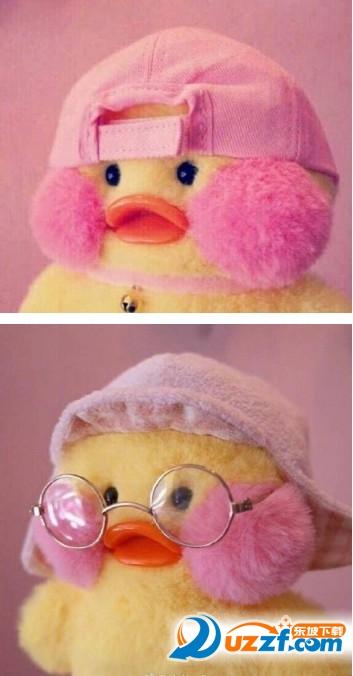 网上很火的黄狗表情是怎么来的?_玻尿酸小黄鸭表情包大全-玻尿酸小黄鸭表情包超清无水印-东坡下载
