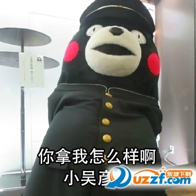 熊本熊如何优雅的吵架表情包下载|熊本熊如何优雅的包