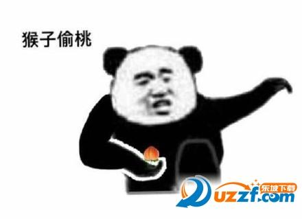 熊猫朋友过两招武功秘籍表情图片大全高清无水印完整版