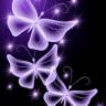 梦幻紫蝴蝶动态壁纸7.0.5 安卓最新版