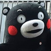 熊本熊如何优雅的吵架表情包完整无水印版