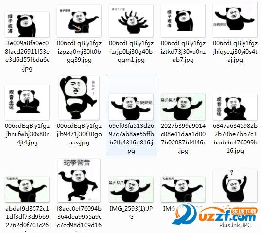 熊猫白鹤亮翅高清表情图片无水印完整版