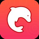 海豚动态壁纸破解版1.1 安卓免费版