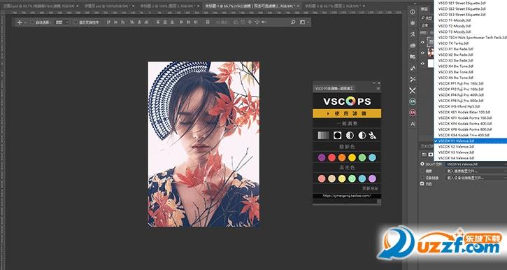 Vsco全滤镜调色插件面板截图1