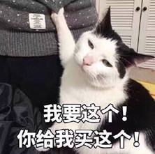 笔画这个你给我买这个图片表情猫咪图片表情我要包娇傲简图片