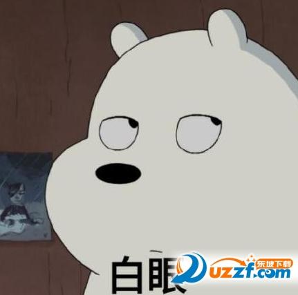 小熊翻白眼可爱表情又一年的搞笑图片图片