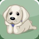 狗语交流器app1.0.1 安卓中文版