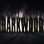 阴暗森林Darkwood正式版