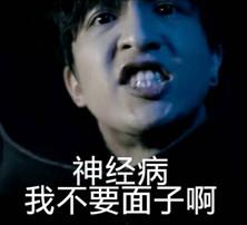 薛之谦神经病啊表情双叶一集杏是表情包哪图片
