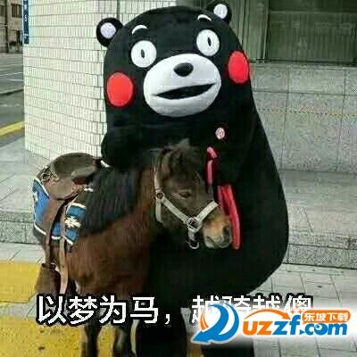 今天小编为大家带来了 熊本熊以梦为马越骑越傻表情包,喜欢斗图的朋友