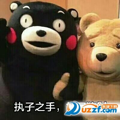 聊天通讯 斗图表情  → 熊本熊以梦为马越骑越傻表情包 无水印版