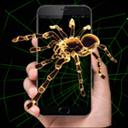 恶搞蜘蛛屏幕U乐娱乐平台1.0 安卓版