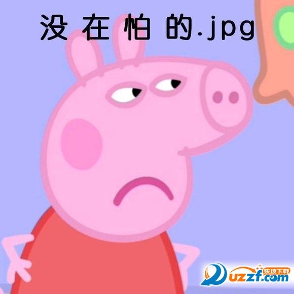 电藐视猪搞笑主席的表情毛风吹表情包图图片